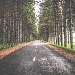 Paisaje carretera